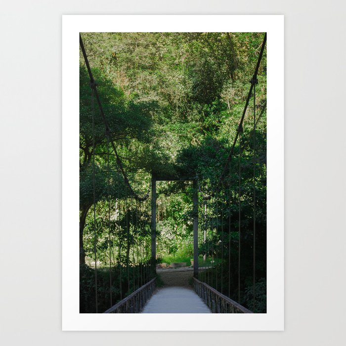 Bridge to Machupicchu Art Print