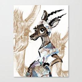 antilope Canvas Print