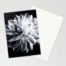 Black And White Dahlia Stationery Cards