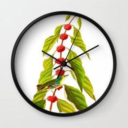 Blue Green Warbler Bird Wall Clock