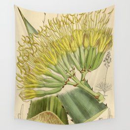 Agave fourcroydes, Asparagaceae, Agavoideae Wall Tapestry