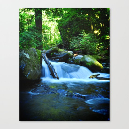 Nature's Remedy Canvas Print