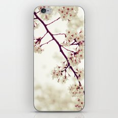 Music of Spring iPhone & iPod Skin