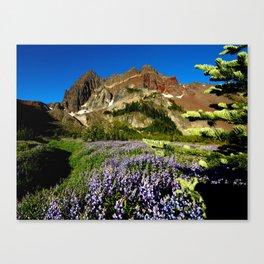 Three Fingered Jack, Oregon Canvas Print