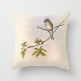 019 Spotted Flycatcher butalis grisola4 Throw Pillow