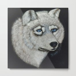 Grey Wolf Collection Metal Print