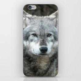 The Wolf Waits ... iPhone Skin