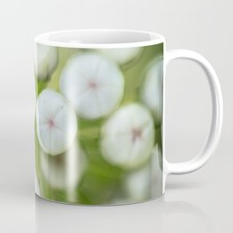 Wht-flowered Milkweed Coffee Mug