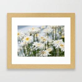 Mother's Garden Framed Art Print