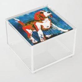 Orange Puppy Acrylic Box