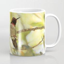 Sweet Hummingbird - Photography Coffee Mug