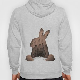 That's No Ordinary Rabbit Hoody