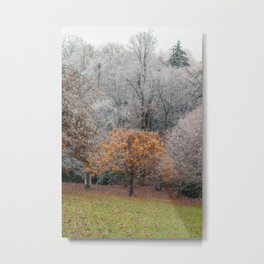 Autumn Meets Winter in the grass meadow. Metal Print