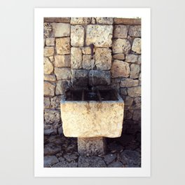 French Well Art Print