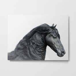 Black Beauty - Minimalist Black and White Horse Photography Metal Print
