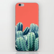 Cactus on Coral #society6 #decor #buyart iPhone Skin