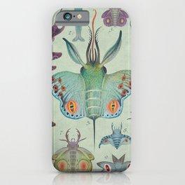 Cephalopodoptera Tab. I iPhone Case