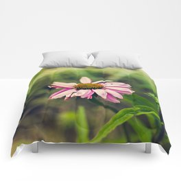 Daisy V Comforters