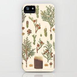 Botanical Cedar iPhone Case