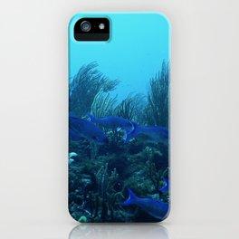 l'aquarium iPhone Case