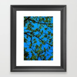 blue and green Framed Art Print