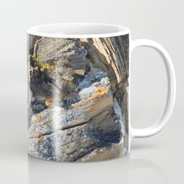 Petrified Coffee Mug