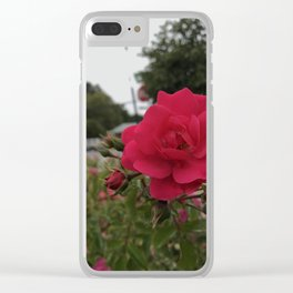 Renew: Pink Rose Clear iPhone Case