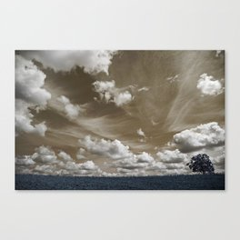 The tree and the sky Canvas Print