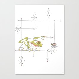 Whimsical Frog & Spider Canvas Print