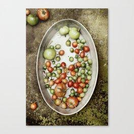 Late Harvest Canvas Print
