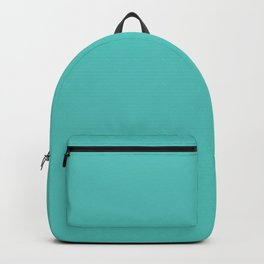 Toothpick Fusion ~ Turquoise Backpack