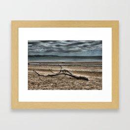 Driftwood 4 Framed Art Print