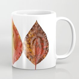 Fal Leaves Mother Nature Coffee Mug