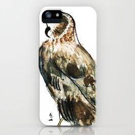 Northern Harrier iPhone Case