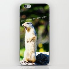 Angry Squirrel iPhone & iPod Skin