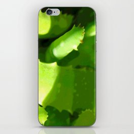 Aloe Abstract iPhone Skin