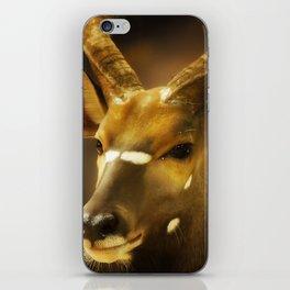 Nyala 2 iPhone Skin