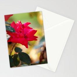 Raindrops Keep Falling Stationery Cards