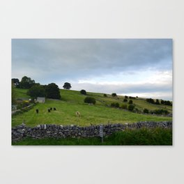 Coutryside Canvas Print