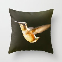 Catch me if you can! Throw Pillow