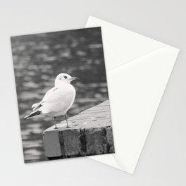Gull Photograph Stationery Cards