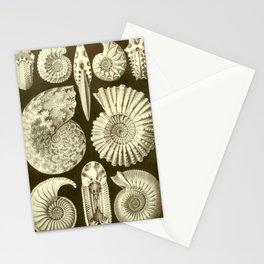 Naturalist Ammonites Stationery Cards