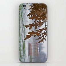The Arboretum  iPhone & iPod Skin