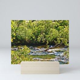 Beautiful river running over rocks Mini Art Print