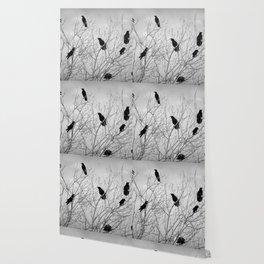 A Murder of Crows Wallpaper