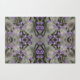 Purple Salt Heliotrope Wildflower Pattern Coachella Valley Wildlife Preserve Canvas Print