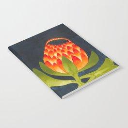 Floral symmetry 1. Notebook