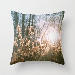 storm king Throw Pillow