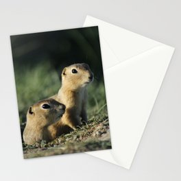 Ground Squirrels Stationery Cards