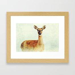 Wild Snow Deer Framed Art Print